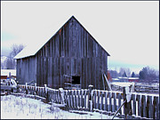 Wooden Building Posters - Barn Standing Tall Poster by Kae Cheatham