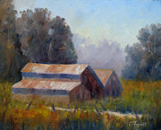 Sonoma County Painting Prints - Barn Trio Print by Carolyn Jarvis