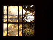 Daniel Kasztelan Metal Prints - Barn Window Metal Print by Daniel Kasztelan
