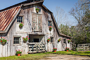 Terry L Ellis Prints - Barn With Flowers Print by Terry Ellis