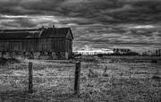 Winter Photo Photos - Barn Yard by Thomas Young