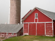 Illinois Barns Metal Prints - Barns and Silo Metal Print by David Bearden