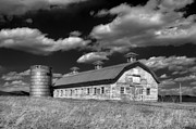 Farming Barns Prints - Barns are Beautiful II BW Print by Steve Hurt