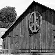 Peace Symbol Framed Prints - Barns for Peace Framed Print by Art Block Collections