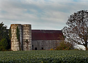 Farming Barns Prints - Barns N Beans  Print by Skip Willits