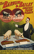 Posters On Drawings - Barnum & Bailey 1900s Slogans Greatest by The Advertising Archives