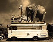 Barnum And Bailey Prints - Barnum and Bailey Goes On a Road Trip 5D22705 Sepia Print by Wingsdomain Art and Photography