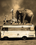 Trailers Posters - Barnum and Bailey Goes On a Road Trip 5D22705 Vertical Sepia Poster by Wingsdomain Art and Photography