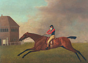 Baronet With Sam Chifney Up Print by George Stubbs