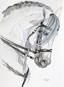 Arabian Horse Paintings - Baroque horse by Janina  Suuronen