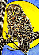 Judy Moon - Barred Owl