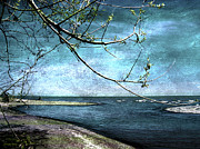 Tourist Attraction Digital Art - Barrier Beach - Old Woman Creek by Shawna  Rowe