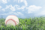 Leagues Metal Prints - Baseball in Grass Metal Print by Stephanie Frey