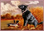 Dog In Lake Prints - Basels Dream Print by Ronald Chambers