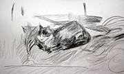 Cyprus Artists Drawings Prints - Bashful Pencil Study Print by Anita Dale Livaditis