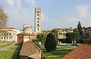 Lucca Photos - Basilica di San Frediano with palazzo Pfanner gardens by Kiril Stanchev