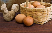 Farm Fresh Framed Prints - Basket of Farm Fresh Eggs Framed Print by Edward Fielding
