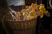 Cheryl Cencich - Basket of flowers