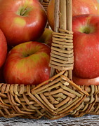 Sharon Miller - Basket Of Honeycrisp...