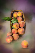 Mary Timman - Basket of Peaches