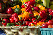 Green Grocer Prints - Basket of Peppers Print by Susan Colby