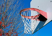 Basket Ball Game Prints - Basketball Net Print by Valentino Visentini