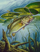 Bass And Frog Print by Jon Q Wright