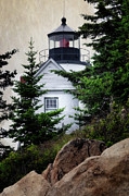 Bass Head Lighthouse Posters - Bass Harbor Head Light Poster by Joan Carroll