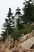 Bass Head Lighthouse Posters - Bass Harbor Lighthouse Poster by Christiane Schulze