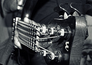 Electrical Photos - Bass  by Stylianos Kleanthous