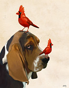 Animal Digital Art Prints - Basset Hound and Red Birds Print by Kelly McLaughlan