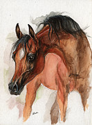 Colt Paintings - Bay arabian foal watercolor portrait by Angel  Tarantella