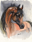 Foal Framed Prints - Bay arabian horse watercolor painting 2013 11 15 Framed Print by Angel  Tarantella