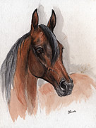 Custom Horse Portrait Prints - Bay arabian horse watercolor portrait 08 03 2013 Print by Angel  Tarantella