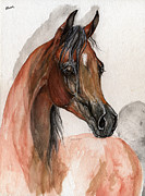 Arab Horse Framed Prints - Bay arabian horse watercolor portrait Framed Print by Angel  Tarantella