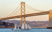 Bay Bridge Gold Print by Kate Brown
