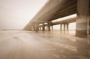 Lisa McStamp - Bay Bridge