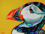 Puffin Paintings - Bay Bulls Puffin by Derrick Higgins