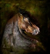 Equine Art Digital Art Framed Prints - Bay Dignity Framed Print by Dorota Kudyba