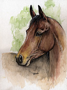 Arab Horse Framed Prints - Bay horse portrait watercolor painting 02 2013 a Framed Print by Angel  Tarantella