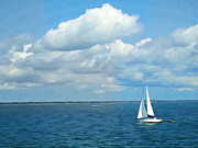 Bay Sailing Print by Barbara McDevitt