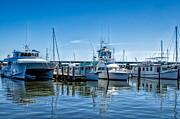 Kathleen K Parker - Bay St. Louis Mississippi Marina
