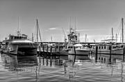 Kathleen K Parker - Bay St. Louis MS Marina BW