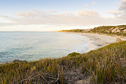 Tim Hester - Bay Sunset