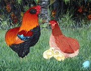 Hens And Chicks Paintings - BB Red Araucana SOP by Amanda  Stewart