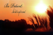 Virtues Posters - Be Patient Poster by Cathy  Beharriell