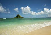 Charmian Vistaunet - Beach and Mokoli