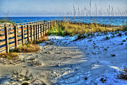 Beach Fence Digital Art Posters - Beach and the Walkway Colored Poster by Michael Thomas