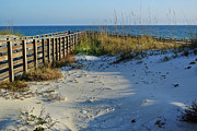 Beach And The Walkway  Print by Michael Thomas