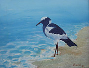 Randall Brewer Prints - Beach Bird 2 Print by Randall Brewer